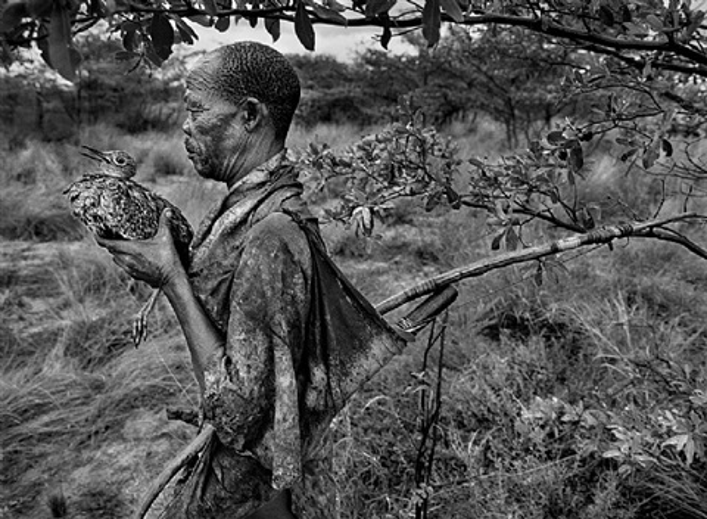 bushmen, botswana [bird man], africa by sebastião salgado
